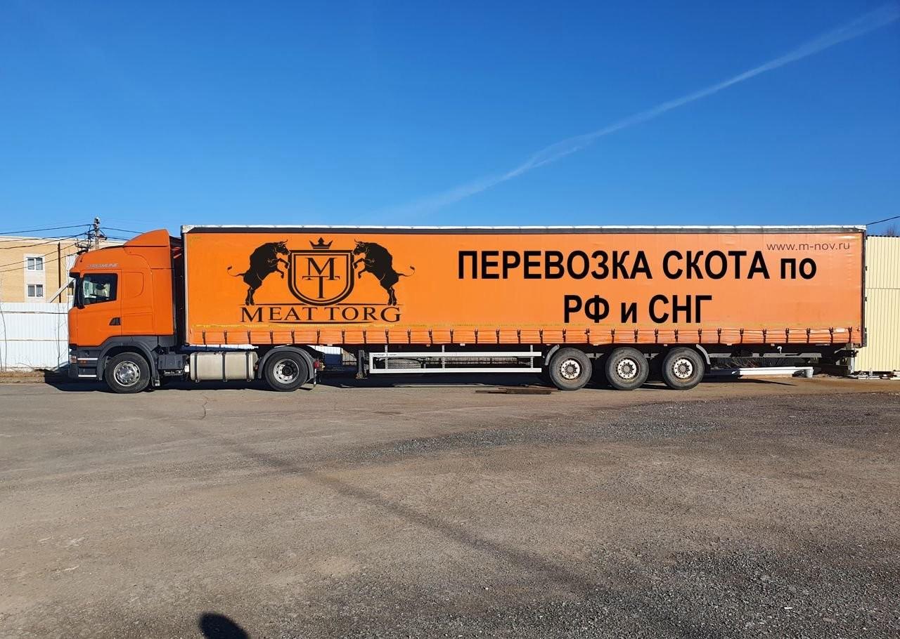 Услуги скотовоза (крс, мрс, лошадей, свиней) - Ижевск